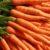 Warzywa korzeniowe cz. 2