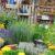 Jak urządzić ogródek? Cz. 3